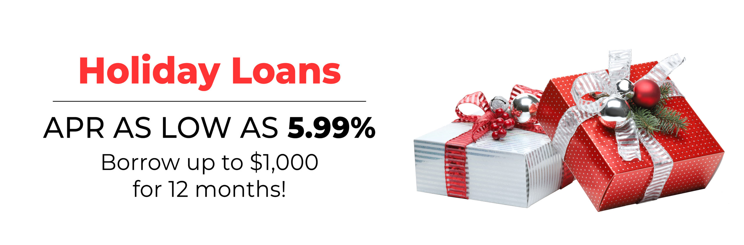 Holiday Loan Banner - Winter 2019